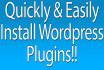 plugin install and customize WordPress theme