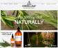 do Responsive website design  for you