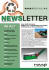 make newsletter and proposal for you