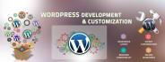 customize of your WordPress website