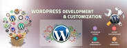 fix your wordpress changes or solve errors