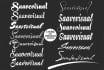 design 2 Signature text Logo