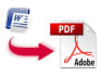 do 3 hours data entry services PDF to excel or word and copy paste