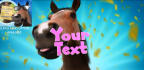 create for you this funny horse intro